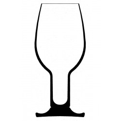 Vinum Tasting Glass 6416/22 Riedel