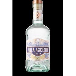 Villa Ascenti Gin 41 %
