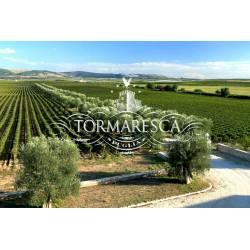 Tormaresca (Italiensk) vinsmagning d 27. oktober kl. 18.30